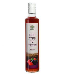 חומץ יין בטעם פירות יער  | טעמים